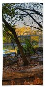 Fallen Log On River Path Beach Towel