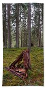 Fallen Tree Beach Towel