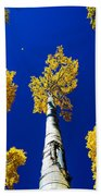 Falling Leaf Beach Towel