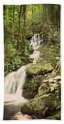 Falls In The Smokies Beach Towel