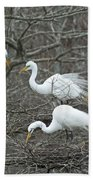 Family Affair Egrets Louisiana Beach Towel