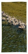 Family Of Geese On The Rogue River Beach Towel