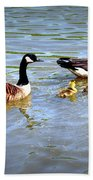 Family Of Geese Out For A Swim Beach Towel