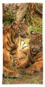Tiger Family Beach Towel