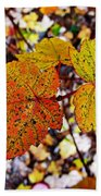 Fancy Fall Leaves Beach Towel