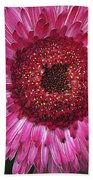 Fancy Pink Daisy Beach Towel
