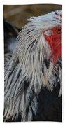 Fancy Rooster Beach Towel
