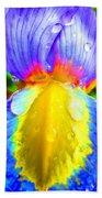 Fantasy Flower 4 Beach Towel