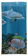 Fantasy Reef Re0020 Beach Towel