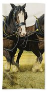 Farm Horses Beach Towel