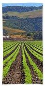 Farm Lands Of The Central Coast By Diana Sainz Beach Towel