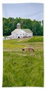 Farm Life Beach Sheet