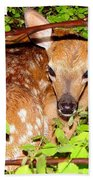 Fawn In The Forest - Inspirational - Religious Beach Towel