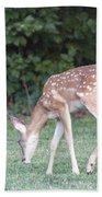 Fawn Meadow Beach Towel