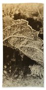 Feather And Leaf Beach Towel
