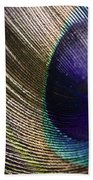 Feather Fan Beach Towel