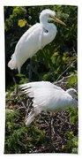 Feathers In A Twist Beach Towel