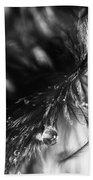 Feathery Drop Beach Sheet