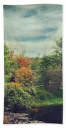 Feed Your Soul Beach Towel by Laurie Search