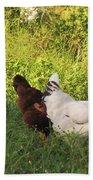 Feeding Chickens Beach Sheet