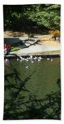 Feeding Ducks Beach Towel