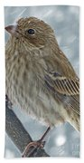 Female House Finch In Snow 1 Beach Towel