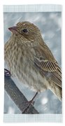 Female House Finch In Snow Beach Towel