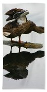 Female Mallard Duck  Beach Towel