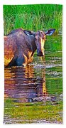 Female Moose Near Airport In Chicken-alaska   Beach Towel