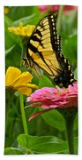 Female Tiger Swallowtail Butterfly With Pink And Yellow Zinnias Beach Towel