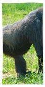 Female Western Lowland Gorilla Beach Towel