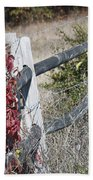 Fence And Creeper Beach Towel