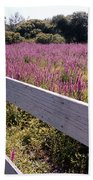 Fence And Purple Wild Flowers Beach Towel