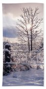 Fence And Tree Frozen In Ice Beach Towel