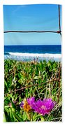 Fenced In Beach Towel