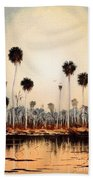 Fenholloway River Florida Beach Towel