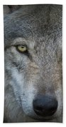 Fenris... Beach Towel