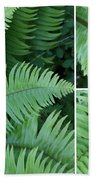 Fern Collage Beach Towel