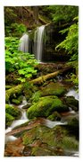 Fern Falls Panoramic Beach Towel