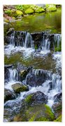 Fern Spring In Spring In Yosemite Np-2013 Beach Towel