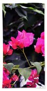Fernwood Botanical Garden Bougainvillea Niles Michigan Usa Beach Towel