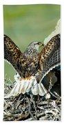 Ferruginous Hawk Male At Nest Beach Towel