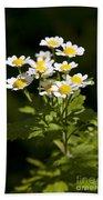 Feverfew Beach Towel