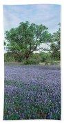 Field Of Bluebonnet Flowers, Texas, Usa Beach Towel