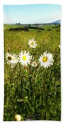 Field Of Flowers Beach Towel by Les Cunliffe