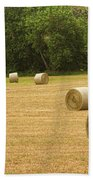 Field Of Freshly Baled Round Hay Bales Beach Towel by James BO  Insogna