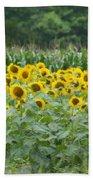 Field Of Sunflowers Beach Towel