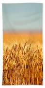Field Of Wheat Beach Towel