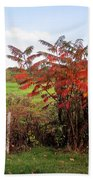Field With Sumac In Autumn Beach Towel