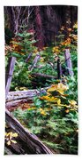 Fields And Fences Of Wawona In Yosemite National Park Beach Towel